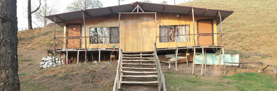 Kasauli Camp Call Us: +91–8130560060